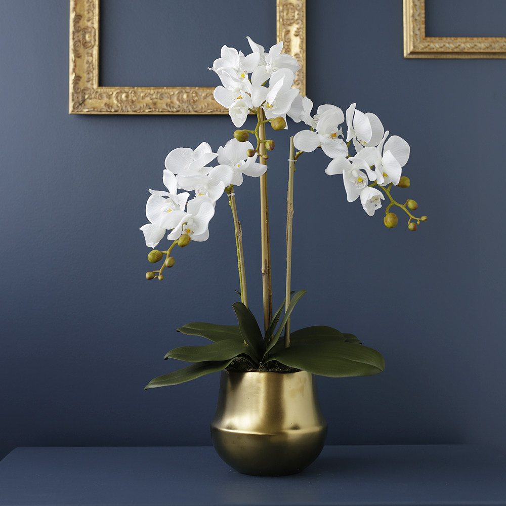 Faux White Butterfly Orchids In Gold Vase Medablooms