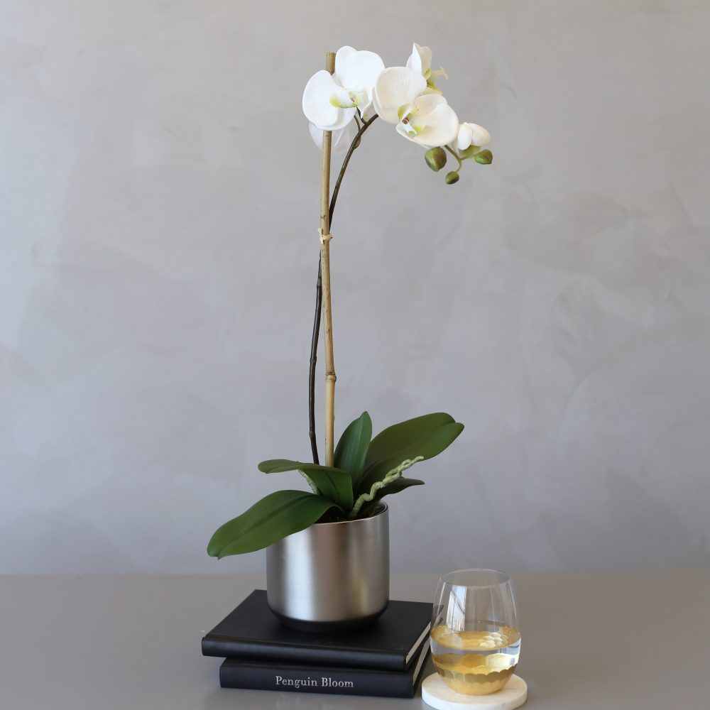Faux Phalaenopsis Orchid In Silver Plated Ceramic Vase Medablooms